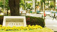 善福寺川緑地・遊歩道※1 約60m(徒歩1分)※D街区より