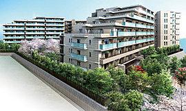 樹々の成長とともに愛着が深まる全241邸の大規模開発。