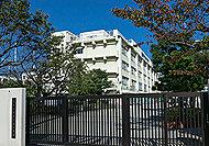 越中島小学校 A:約220m(徒歩3分)B:約220m(徒歩3分)