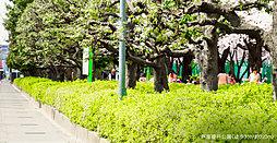 戸塚榎戸公園 約220m(徒歩3分)