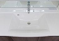 カウンターとボウルが一体形成された、つなぎ目がなくお手入れがしやすい洗面カウンターです。