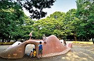 薬円台公園 約390m(徒歩5分)