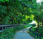 都立玉川上水緑道 約690m(徒歩9分)