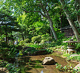 柏の宮公園 約1,560m(徒歩20分)