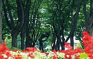 定禅寺通 約520m(徒歩7分)