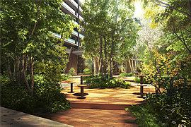 共用棟のある静かな中庭ティンバーガーデン。まるで森のリゾートを訪れたかのような雰囲気が印象的な中庭ティンバーガーデン。木造の共用棟ゲストハウスから望む美しい四季の表情も楽しみです。
