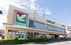 ヨークマート練馬平和台店 約630m(徒歩8分)