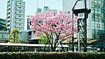 荻窪駅周辺 約460m(徒歩6分)