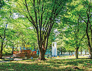 桐ヶ丘中央公園 約740m(徒歩10分)