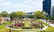 中之島公園バラ園 約160m(徒歩2分)(2012年5月18日撮影)