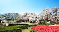京都府立植物園 約1,450m(徒歩19分)