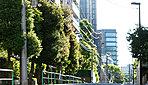 香町中央通り 約80m(徒歩1分)(平成28年5月撮影)