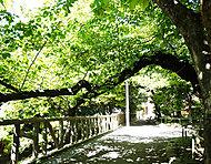 東郷元帥記念公園 約380m(徒歩5分)(平成28年5月撮影)