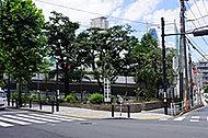 区立赤坂小学校 約490m(徒歩7分)