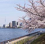 石川島公園 約600m(徒歩8分)