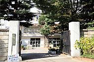 船橋市立葛飾小学校 約180m(徒歩3分)