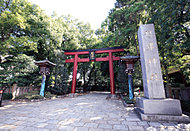 根津神社 約780m(徒歩10分)