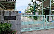 広島市立舟入小学校 約180m