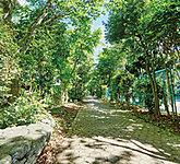 福栄緑道 約150m(徒歩2分)