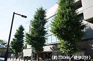 貫井図書館 約130m(徒歩2分)
