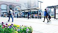 亀有駅南口 約320m(徒歩4分)