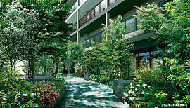 都市に緑の風景があれば、人の歩みも心も穏やかになります。建物の2面に常緑樹と落葉樹の並木をしつらえ、趣の異なる「緑の道」を創造。