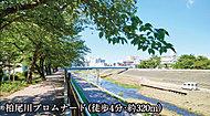 柏尾川プロムナード 約320m(徒歩4分)