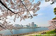 京浜運河緑道公園 コーチエントランスから約590m(徒歩8分)