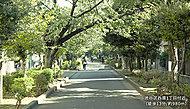 渋谷区西原1丁目付近 約980m(徒歩13分)