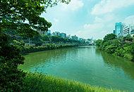 新見附橋より見た「外濠公園」の風景 約800m(徒歩10分)