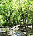 めぐろ区民キャンパス公園 約940m(徒歩12分)