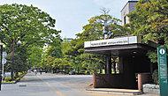 地下鉄南北線「勾当台公園」駅 約950m(徒歩12分)