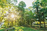 中野木緑地 約400m(徒歩5分)
