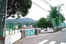 善通寺幼稚園 (約910m:徒歩12分)