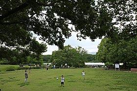 広々とした草原で子ども達も遊び放題。