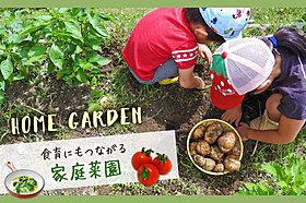 食育にもつながる家庭菜園