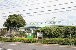 鈴木小学校(現地より徒歩8分・620m)