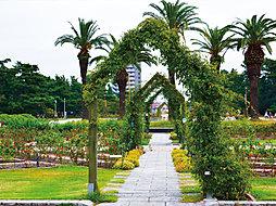浜寺公園 噴水...