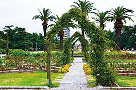 浜寺公園 徒歩5分(約330m)