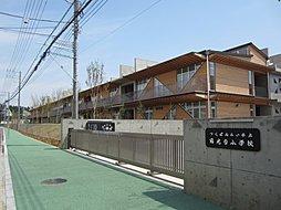陽光台小学校 ...