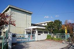 伏見小学校まで...
