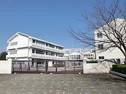 大井沢小学校徒...