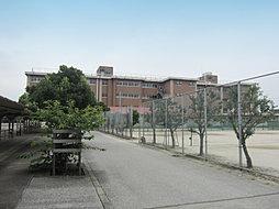 陽東中学校 (...