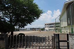 石井小学校 (...