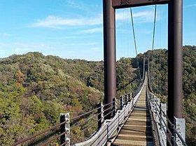 大阪府民の森「星のブランコ」 ハイキングに行きませんか?