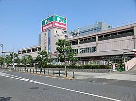 島忠ホームセンター府中店:徒歩12分(900m)