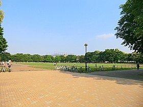 光が丘公園:徒歩30分(2400m)