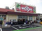 【住環境】 スーパーや保育園が徒歩10分圏内!