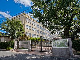中野区立第七中学校まで徒歩4分(約317m)