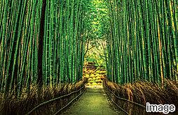 ハイムプレミアム嵯峨嵐山のその他